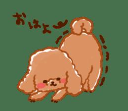 toy poodles2 sticker #6998415