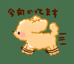 toy poodles2 sticker #6998417
