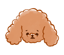 toy poodles2 sticker #6998423