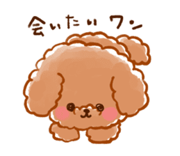 toy poodles2 sticker #6998427