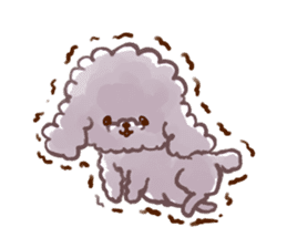 toy poodles2 sticker #6998437