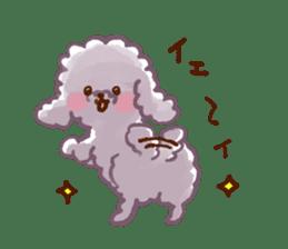 toy poodles2 sticker #6998444