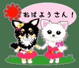 Chihuahua of Kansai dialect sticker #7011168