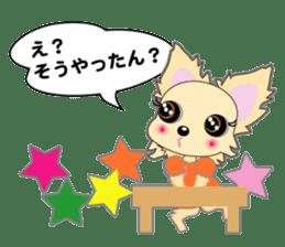 Chihuahua of Kansai dialect sticker #7011173