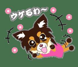 Chihuahua of Kansai dialect sticker #7011176