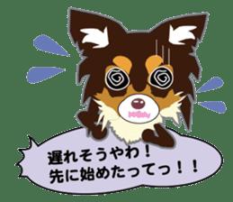 Chihuahua of Kansai dialect sticker #7011178