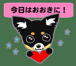 Chihuahua of Kansai dialect sticker #7011186