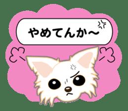 Chihuahua of Kansai dialect sticker #7011191