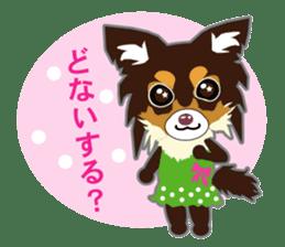 Chihuahua of Kansai dialect sticker #7011192