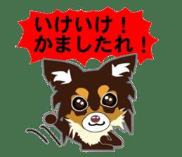 Chihuahua of Kansai dialect sticker #7011194