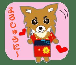 Chihuahua of Kansai dialect sticker #7011196