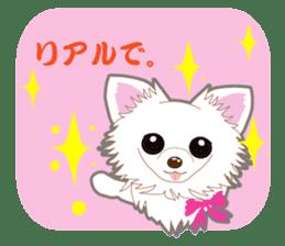 Chihuahua of Kansai dialect sticker #7011198