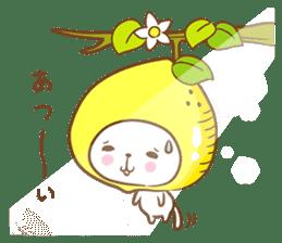 Lemon cat squash 2 sticker #7013048