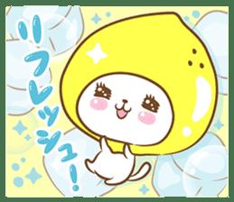 Lemon cat squash 2 sticker #7013054