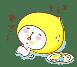 Lemon cat squash 2 sticker #7013067