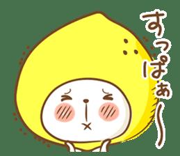 Lemon cat squash 2 sticker #7013083