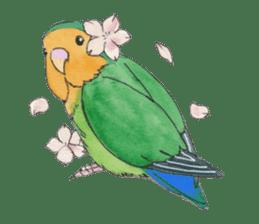 Everyday lovebird sticker #7024568