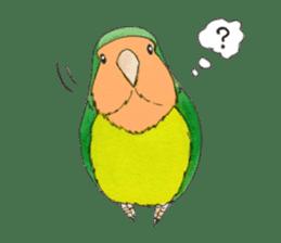 Everyday lovebird sticker #7024572