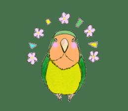 Everyday lovebird sticker #7024573