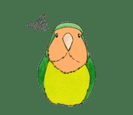 Everyday lovebird sticker #7024574