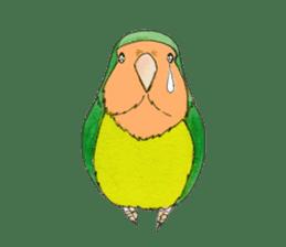 Everyday lovebird sticker #7024577