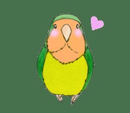 Everyday lovebird sticker #7024579
