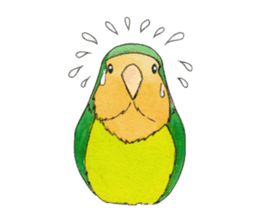 Everyday lovebird sticker #7024583