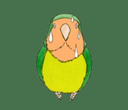 Everyday lovebird sticker #7024584