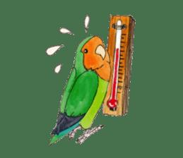 Everyday lovebird sticker #7024596