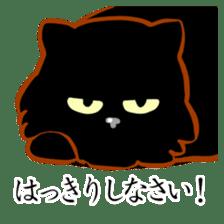 Black cat's Proverbs sticker #7055453