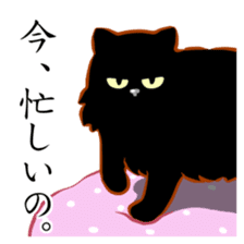 Black cat's Proverbs sticker #7055457