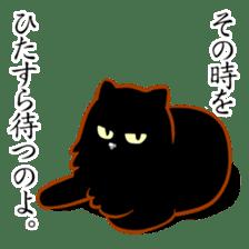 Black cat's Proverbs sticker #7055478