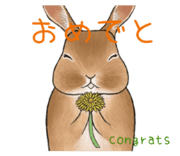 Latte and Rabbit's sticker #7064769