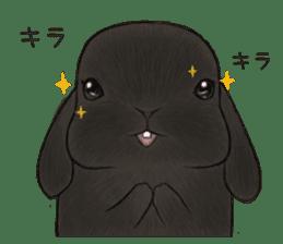 Latte and Rabbit's sticker #7064771