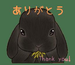 Latte and Rabbit's sticker #7064772