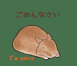 Latte and Rabbit's sticker #7064775