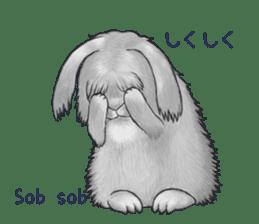 Latte and Rabbit's sticker #7064776