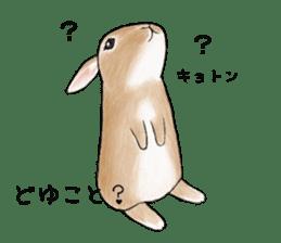 Latte and Rabbit's sticker #7064783
