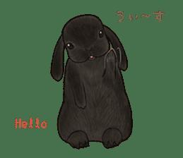 Latte and Rabbit's sticker #7064789