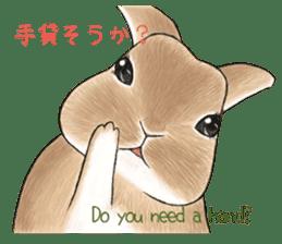 Latte and Rabbit's sticker #7064793