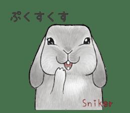 Latte and Rabbit's sticker #7064803