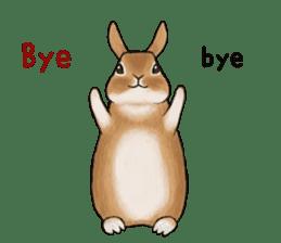 Latte and Rabbit's sticker #7064807