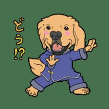 Go!Go!Golden Retriever 2 ! sticker #7082681