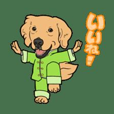 Go!Go!Golden Retriever 2 ! sticker #7082682