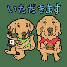 Go!Go!Golden Retriever 2 ! sticker #7082691