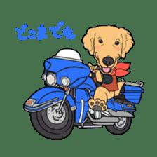 Go!Go!Golden Retriever 2 ! sticker #7082702