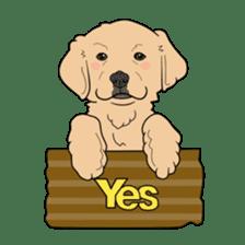 Go!Go!Golden Retriever 2 ! sticker #7082716