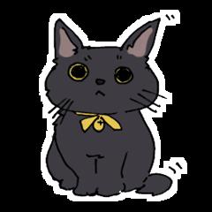 Of black cat Gee