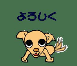 Chihua-tan of chihuahua sticker #7089560