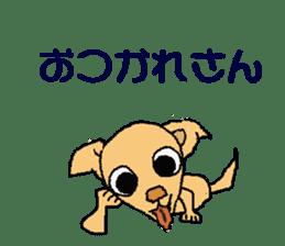 Chihua-tan of chihuahua sticker #7089569